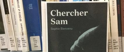 Chercher Sam (2014)