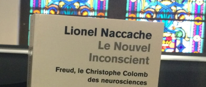 Le nouvel inconscient (2009)